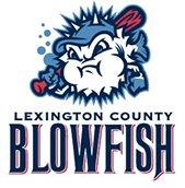 Lexington County Blowfish Baseball